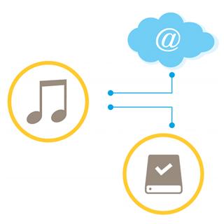 Axis Soluciones Audio IP 6