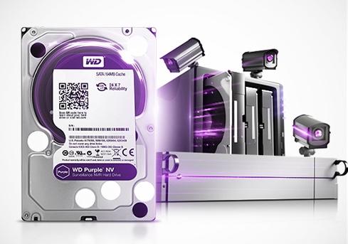 WD PURP purple 2